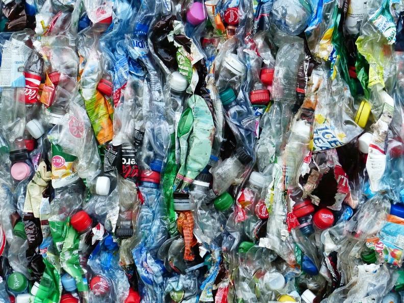 Plastic bottles ready for recycling.jpg