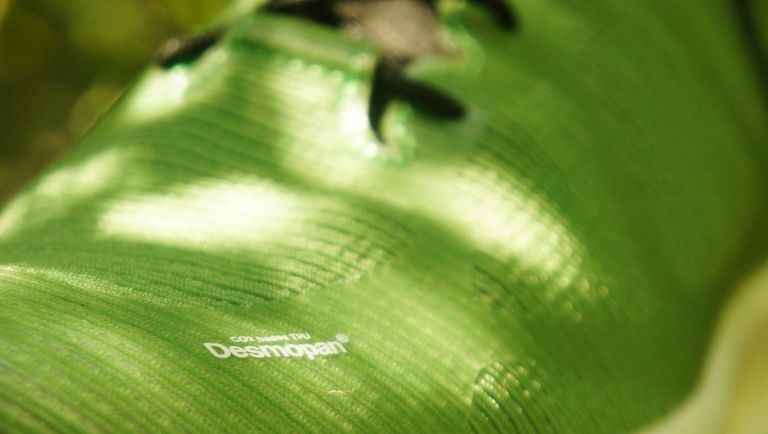 Covestro adds its bio-TPUs to Desmopan product range